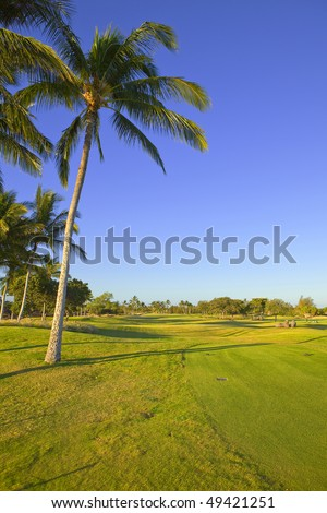 photo of a tropical golf course - stock photo