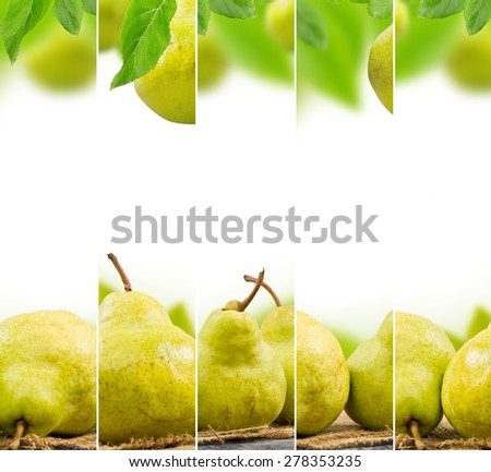 Photo of abstract pear mix with white space for text - stock photo