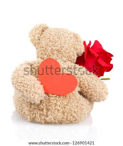 Photo of beautiful soft toy isolated on white background, back side of teddy bear holding red fresh rose and heart-shaped postcard, Valentine day, romantic present, 14 of february, love concept - stock photo
