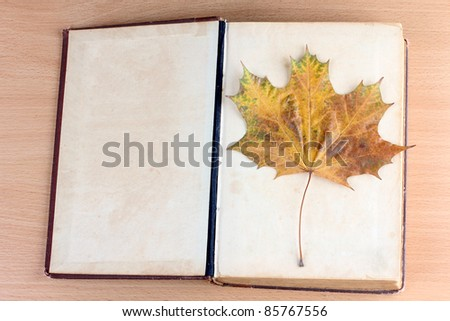 Photo of book and maple leaf - stock photo