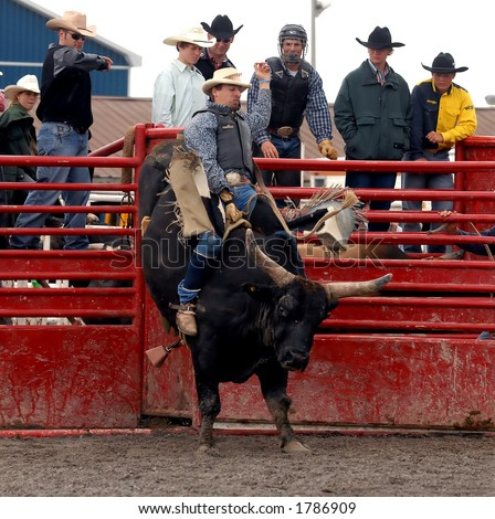 Photo of Bullrider at the Help A Child Smile Rodeo, Sept. 3/2006 in Welland, Ontario, Canada. - stock photo