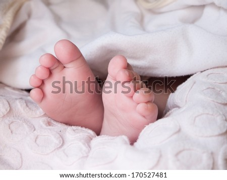 Photo of close-up baby feet