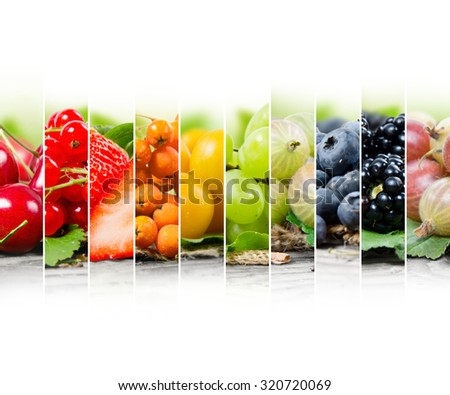 Photo of colorful berry mix with white space for text - stock photo