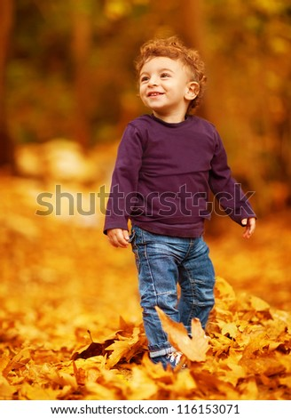 Photo of cute little boy having fun in autumn park, adorable kid playing game with dry autumnal leaves in forest, cute little toddler standing in beautiful fall woods, carefree childhood - stock photo