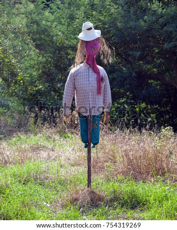 Photo of cute scarecrow in the field.