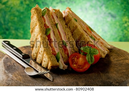 photo of delicious sandwich with cheese and ham on wooden table - stock photo