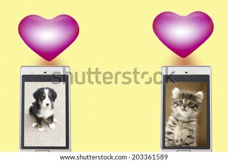 Photo Of Dogs And Cat Reflected In Mobile Screen - stock photo