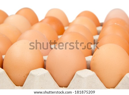 Photo of eggs in a cardboard isolated on white