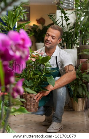 Photo of florist taking care of his plants - stock photo