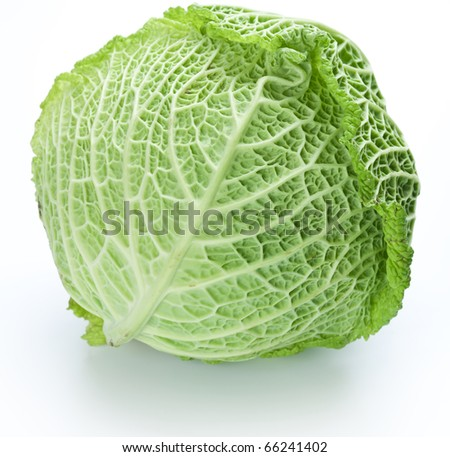 Photo of fresh cabbage on a white background - stock photo