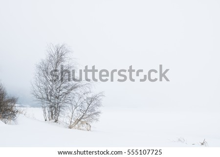 Photo of frozen lake on a foggy winter day with trees and snow around