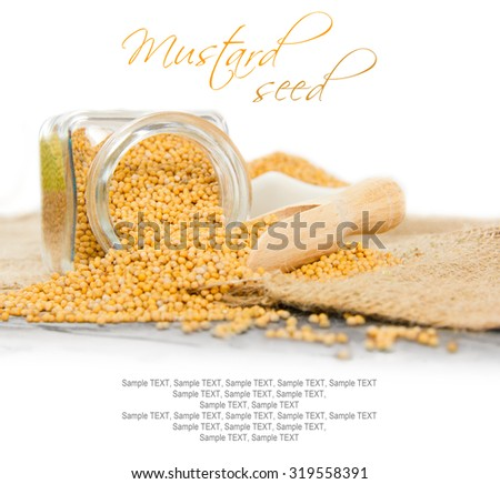 Photo of glass spicebox full of mustard seeds on burlap with white space