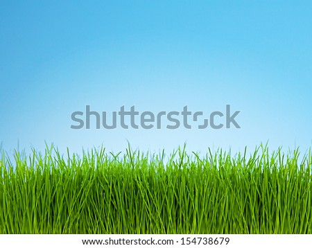 Photo of green grass against bright blue sky. - stock photo
