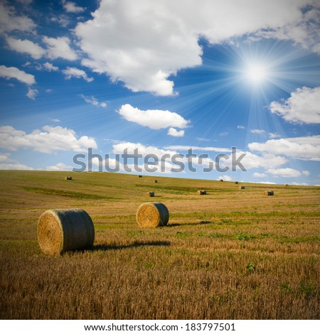 Photo of harvested field with straw bales