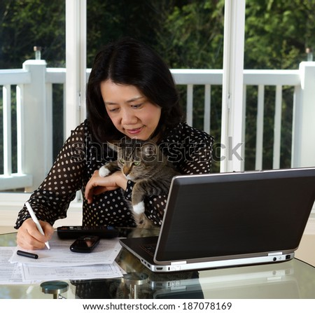 Photo of mature holding her pet while working at home with laptop, calculator, cell phone and papers on top of table and large windows in background - stock photo