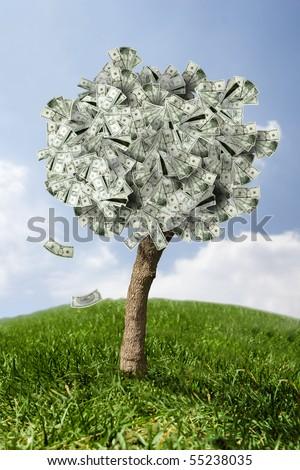 photo of money tree made of dollars - stock photo