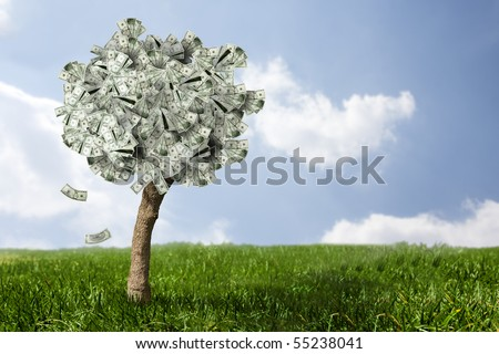 photo of money tree made of dollars - stock photo