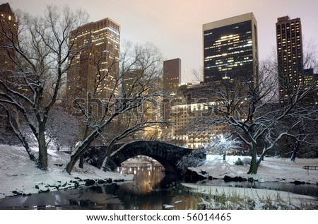 Photo of New York City buildings as viewed from Central Park at night.  Taken December 19, 2008 in the USA. - stock photo