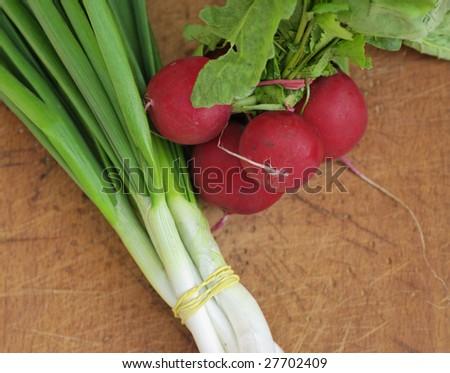 Photo Of Onion and Early Radish - stock photo