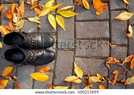 photo of Pair of black female boots in autumn park