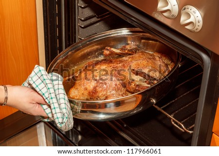 photo of roast duck in the oven in home - stock photo