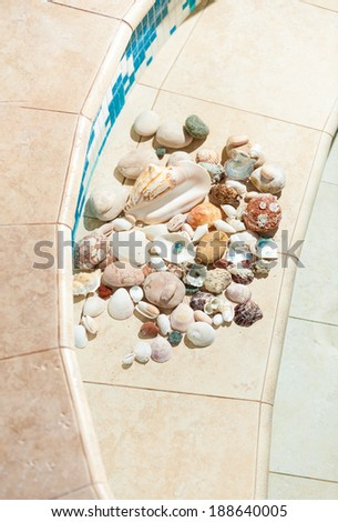 Photo of seashells and pebbles lying on bottom of swimming pool - stock photo