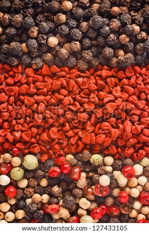 Photo of set of spices for background or texture