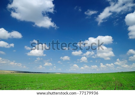 Photo of summer landscape. Cloudy sky and field. - stock photo