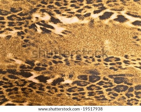 Photo of the brown wild leopard background - stock photo