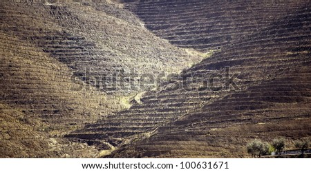Photo of the Douro Valley in Portugal vineyards in the mountains and the farm