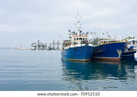 Photo of the harbor in the Croatia - stock photo