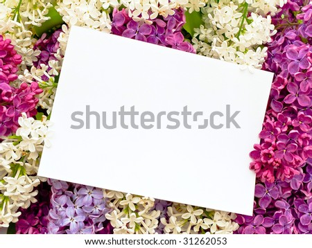 Photo of the pink white and purple lilac with invitation - stock photo