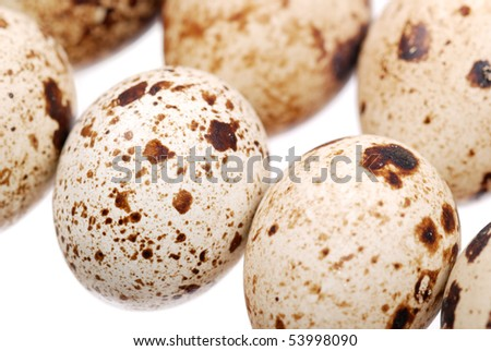 Photo of the quail egg isolated on white