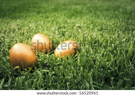 photo of three golden eggs on grass to represent wealth and luck - stock photo
