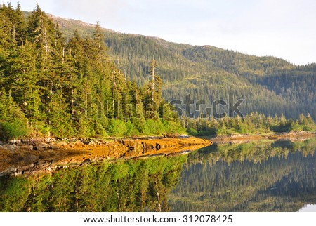Photo of trees reflecting into the ocean with mountains looming in the distance