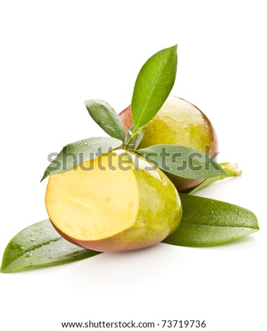 photo of tropical mango fruit with green leaves on white isolated background
