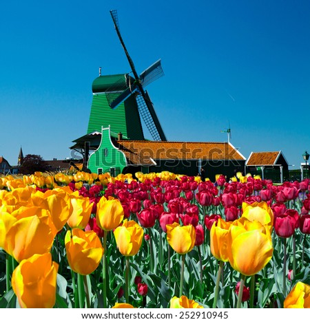 Photo of windmill in Holland with blue sky  - stock photo