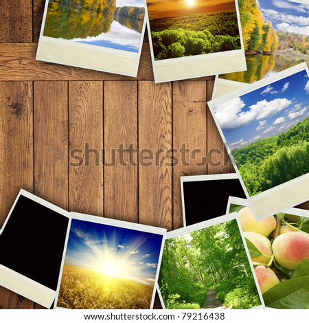 photo on the brown dry wood - stock photo