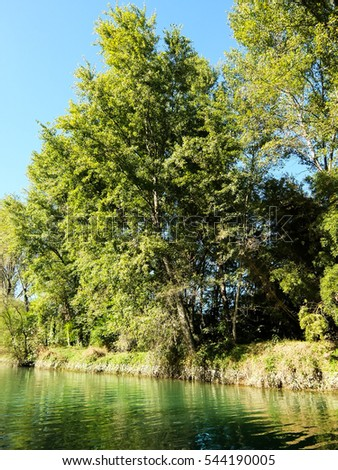 Photo Picture of Beautiful  Wild Brenta River in North Italy