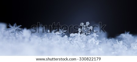 photo real snowflakes during a snowfall, under natural conditions at low temperature   - stock photo