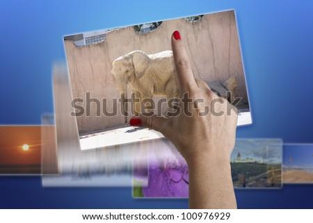 Photo resize - stock photo
