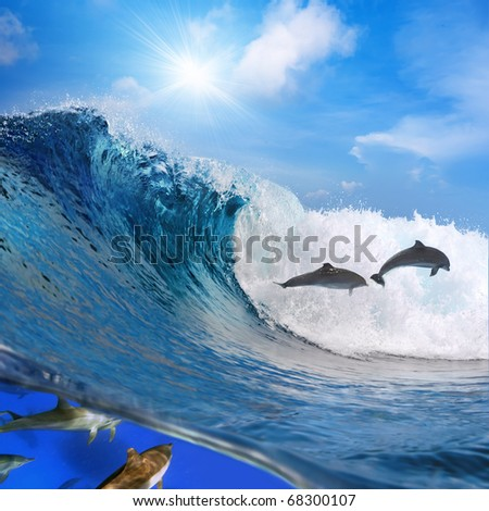 Photo separated by waterline. Two happy playful dolphins leaping from ocean breaking surfing wave to foam and other part of its flock swimming underwater - stock photo