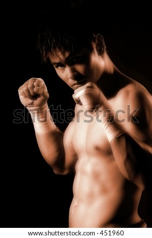 photo series of young boxer - stock photo