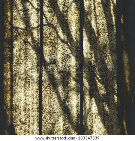 Photo taken against the light. Trees behind  of old polycarbonate panels. - stock photo