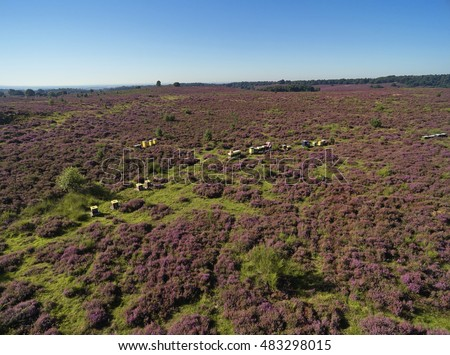 Photo taken with a drone of a bee keeper with bee hives at National park 'De Veluwe', section 'Posbank', near the city of 'Arnhem', province of 'Gelderland', the Netherlands