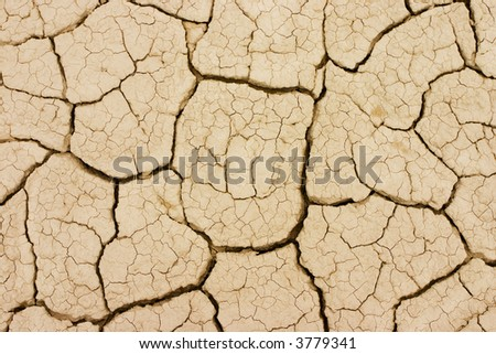 Photo took to the ground in a dry terrain. The land is cracked due the lack of water. - stock photo