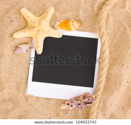 Photo with seashells and starfish on sand - stock photo
