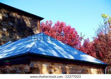 Photograph featuring the corrugated roof of Leasingham Estate Wines with red-colored leaves in Autumn (Clare Valley Wine Region, South Australia). - stock photo