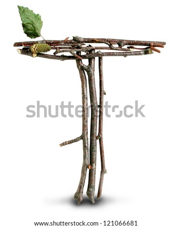 Photograph of Natural Twig and Stick Letter T