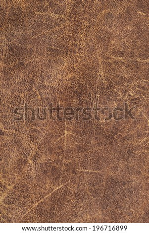 Photograph of old, weathered, rough, cracked, wrinkled, coarse grained, exfoliated cowhide texture sample - stock photo